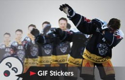 GIF Sticker Kreation